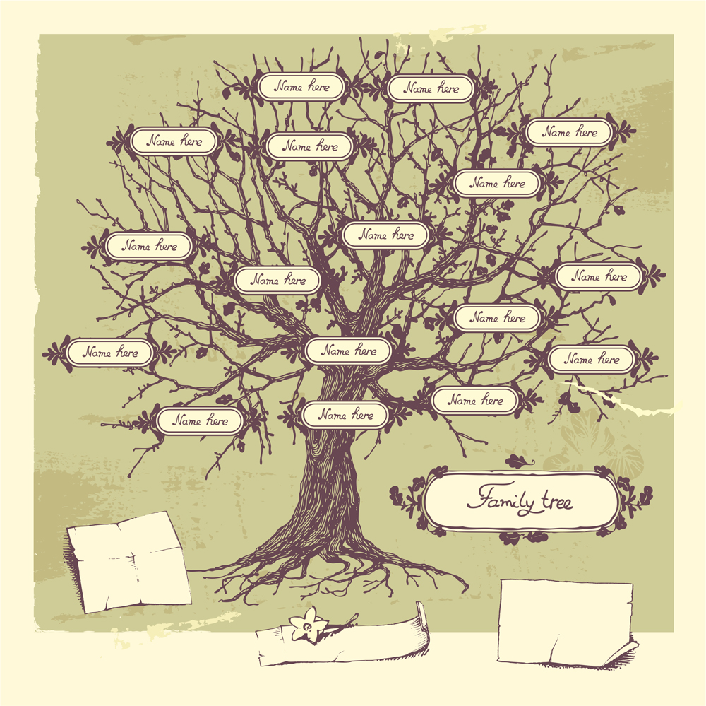 Today's traditional family tree might require a few more branches